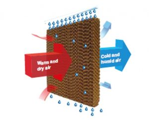 how outdoor air cooler works